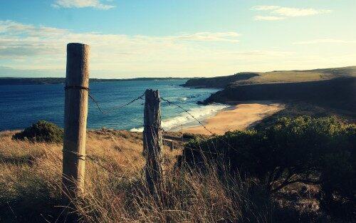 The-Coast.jpg